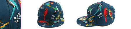 The Bird Catcher New Era Cap by LRG