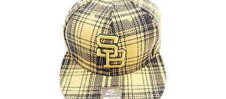 Nike SB Caps