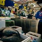 Tsukiji_Fish_Market_img-05