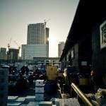 Tsukiji_Fish_Market_img-13