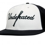 Undefeated Spring 2010 Third Delivery 14
