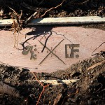 "Akomplice x Frank 151 ""Nostradamus 2012"" Box Set-3"