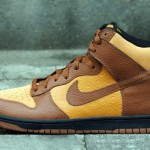 nike-dunk-be-true-to-your-street-2-formatmag