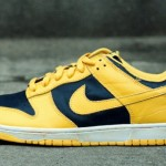 nike-dunk-be-true-to-your-street-4-formatmag