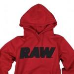 raw_2011_january_02