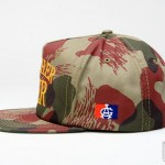 acapulco-gold-spring-2011-delivery-two-5