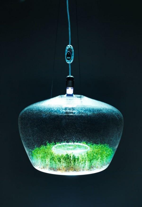 glass-1-11-600x872